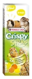 Crispy Sticks Citrus Fruit 2x55g