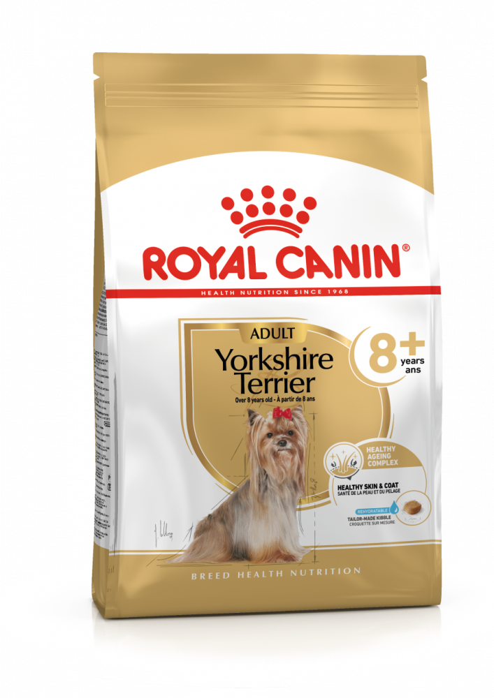 Yorkshire Terrier adult 8+, 500g